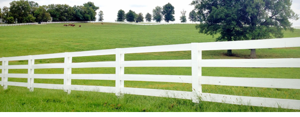 Malachi:  What Side of the Fence Are You On?
